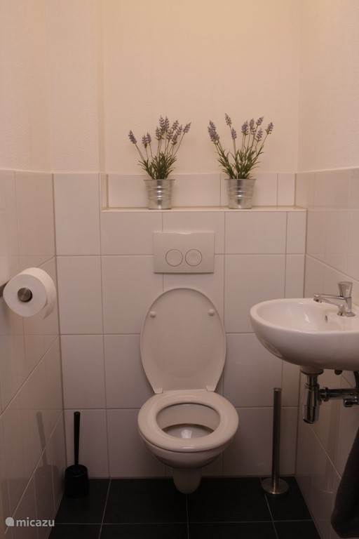 Toilet beganegrond