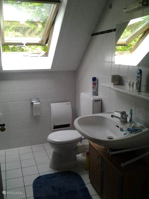 Vakantiehuis Duitsland, Sauerland, Frankenau Appartement Welkom in Sauerland app. 227 onder