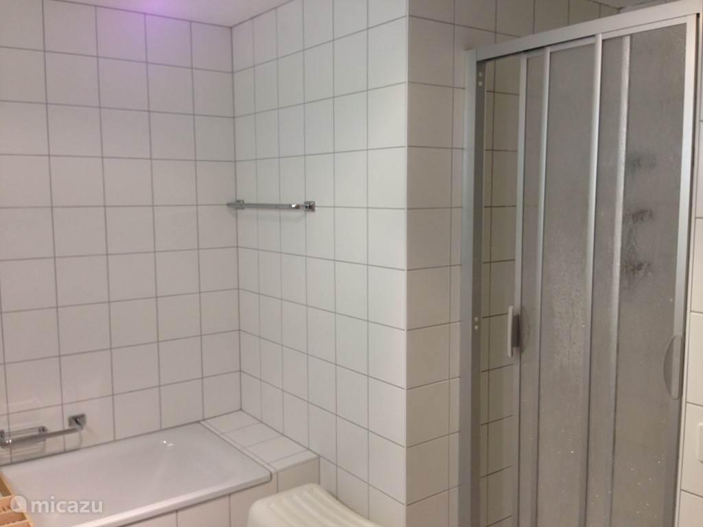 één van de 2 badkamers in het chalet