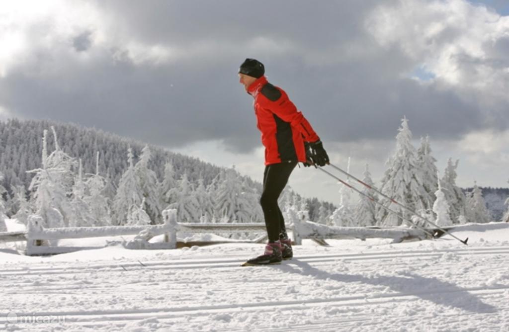 Langlaufen of skiën in de mooie omgeving
