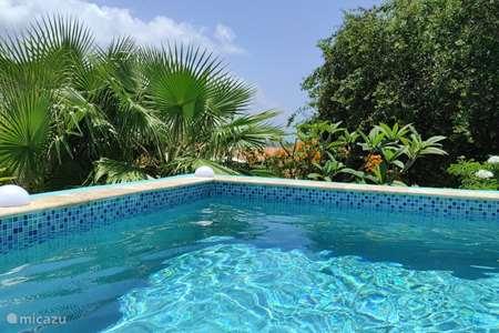 Ferienwohnung Curaçao, Banda Abou (West), Fontein villa Cas Bon Bini - Ferienhaus mit Pool