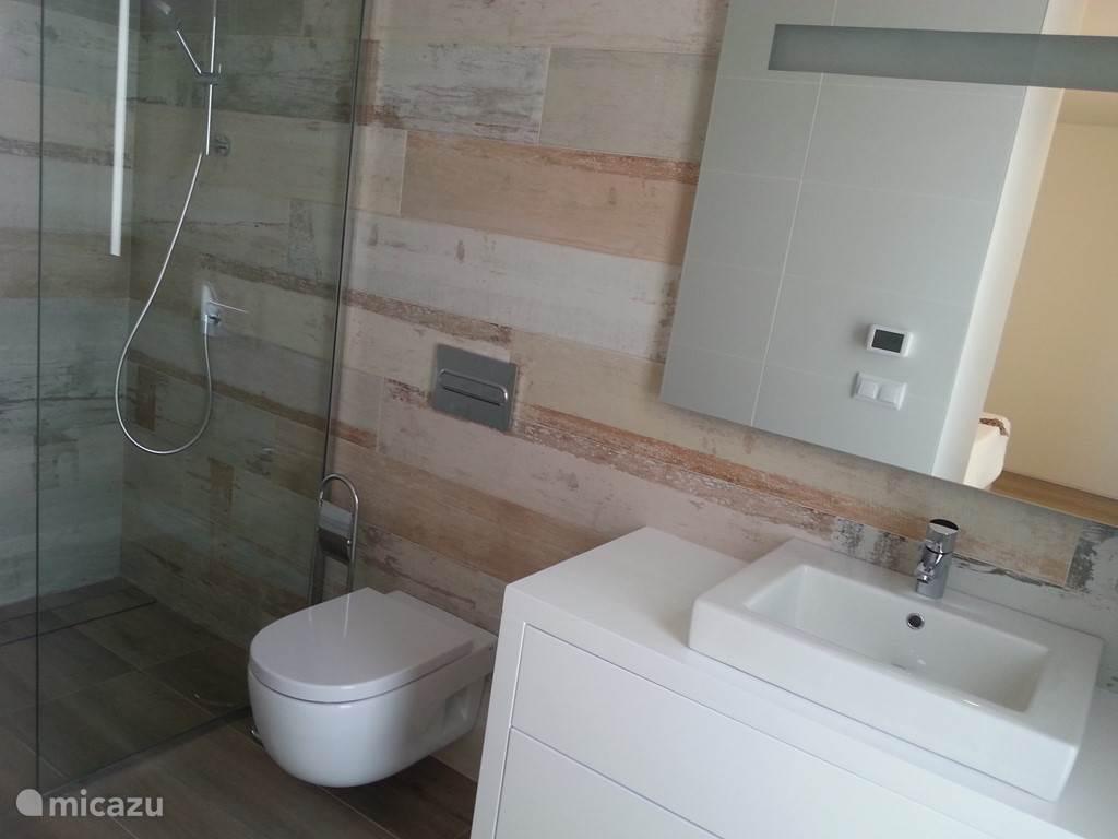 Badkamer met vloerverwarming, inloopdouche, WC, wasbekken