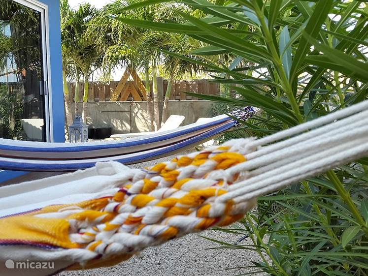 Hammocks with privacy