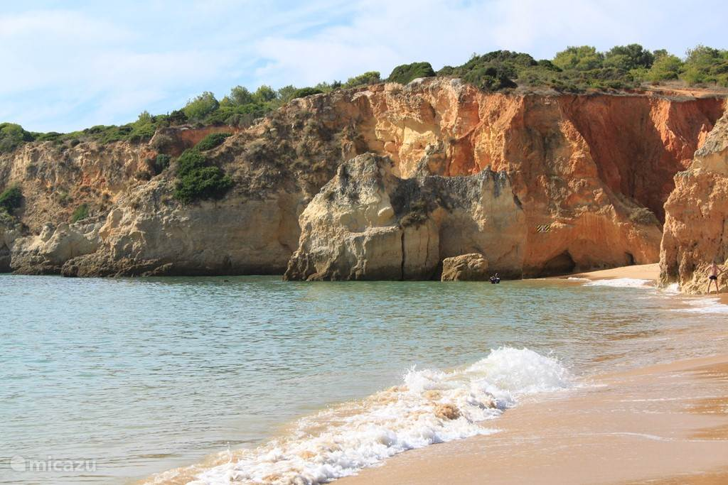 Vakantiehuis Portugal, Algarve, Alvor Appartement Mimosa, zonovergoten appartement