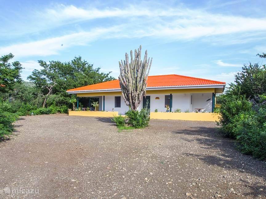 Vacation rental Curaçao, Banda Abou (West), Sint Willibrordus Apartment Divi Divi group accommodation