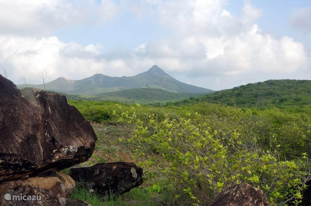 Vakantiehuis Curaçao, Banda Abou (west), Jan Donker Studio Studio Rust en Pad