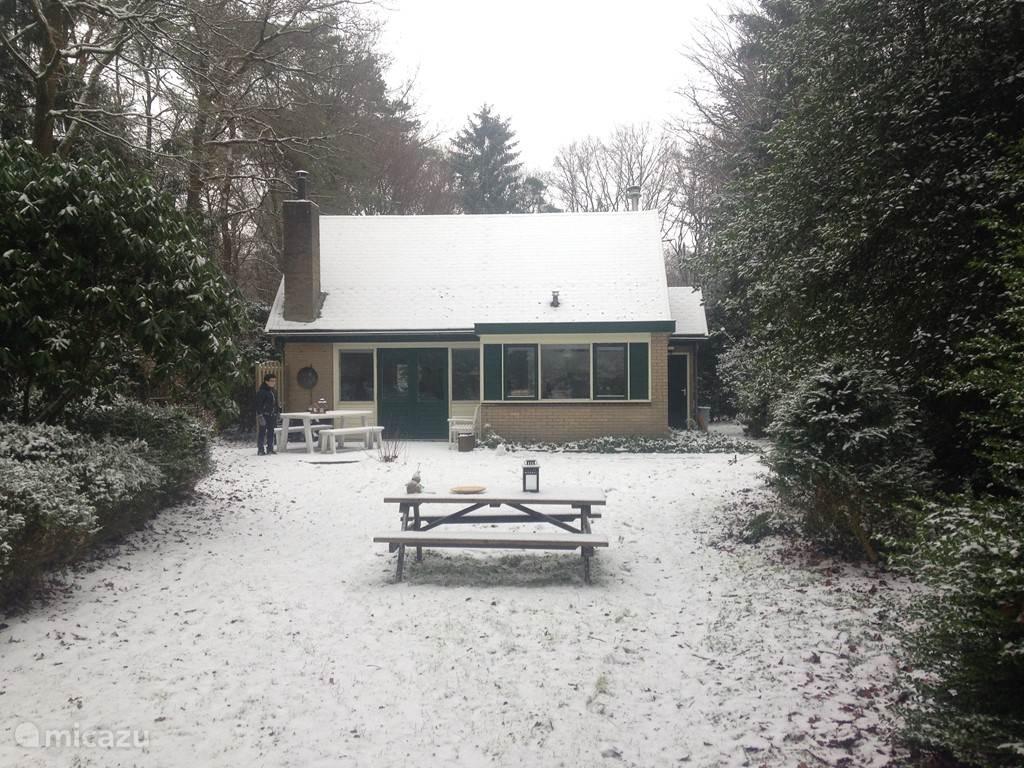 Winterlandschap bij het boshuisje