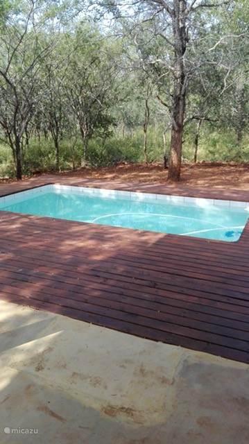 Heerlijk zwembad met uitzicht over de bush