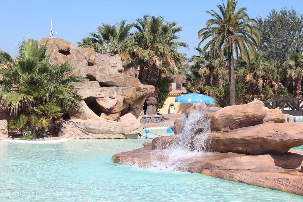 zwemmen tussen de palmen