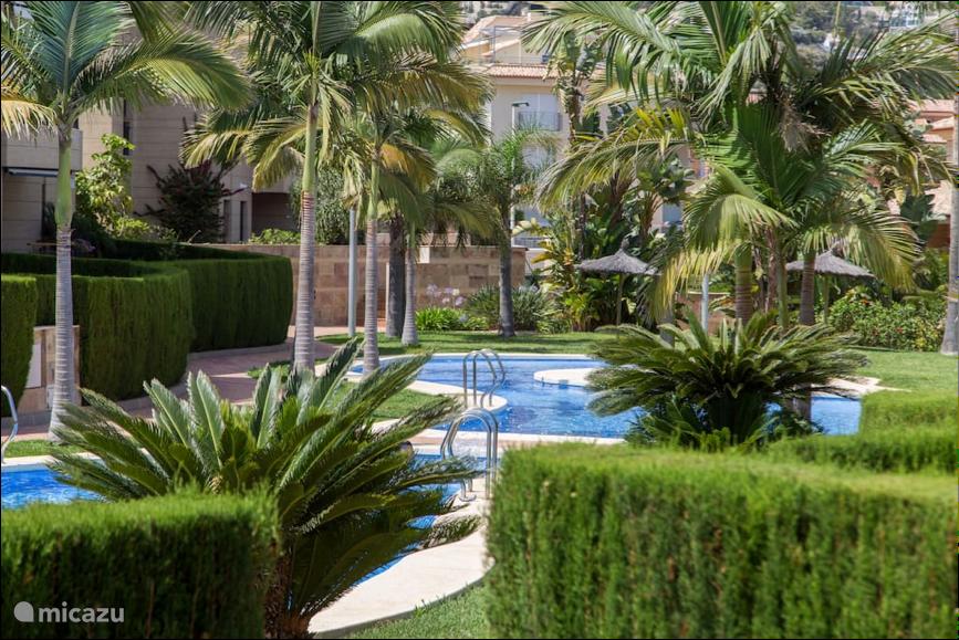 Zwembad in mooi aangelegde tuin