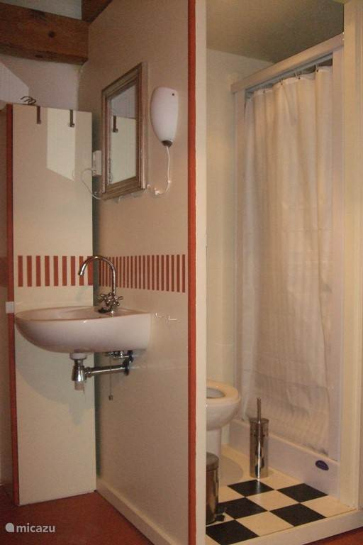Badkamer Tante Rose rood, douche/wc en wastafel