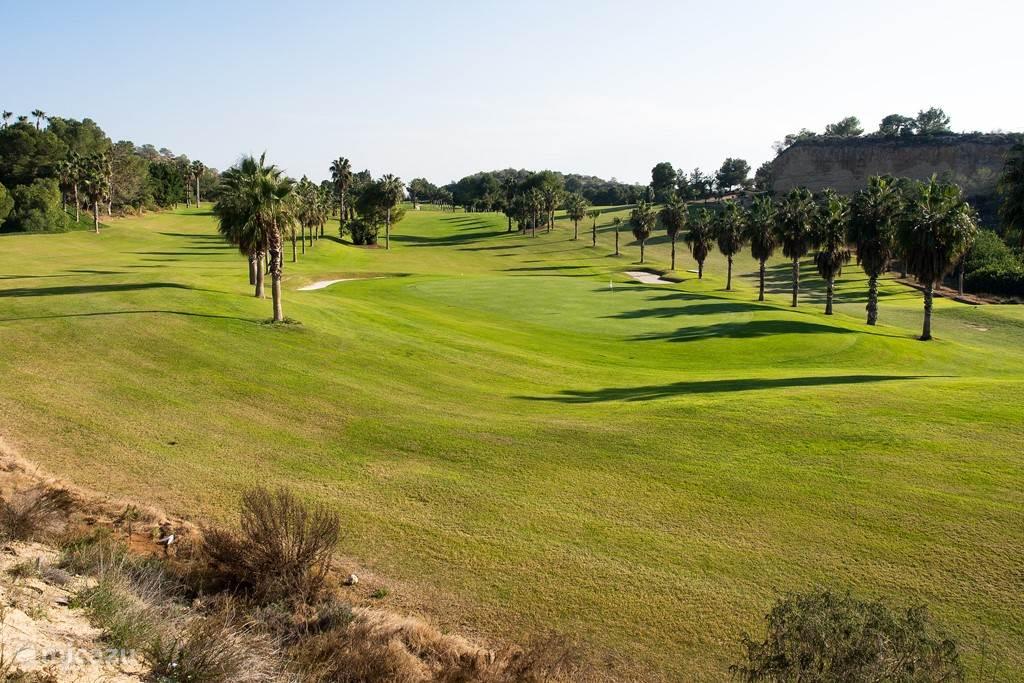 In de directe omgeving van het huis bevinden zich drie 18-holes golfbanen: Campoamor, Las Ramblas en Villamartin.