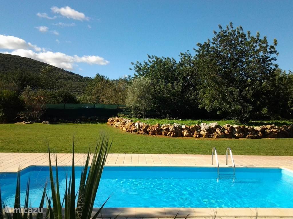 Zwembad met speelveld