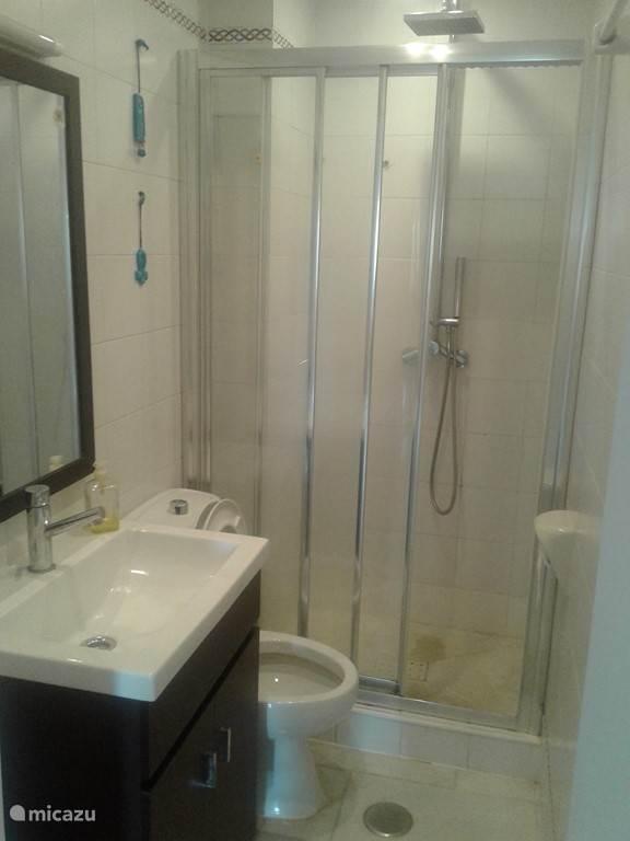 2 de badkamer met wastafel, douche en toilet