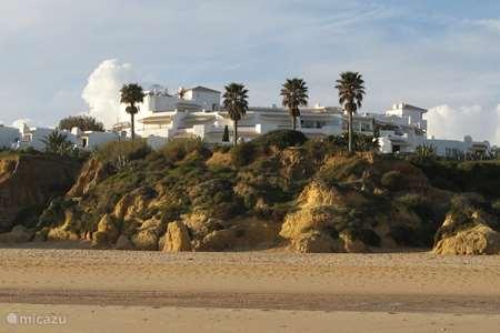 Vakantiehuis Portugal, Algarve, Pêra - appartement Clube Nautilus Casa das Conchas