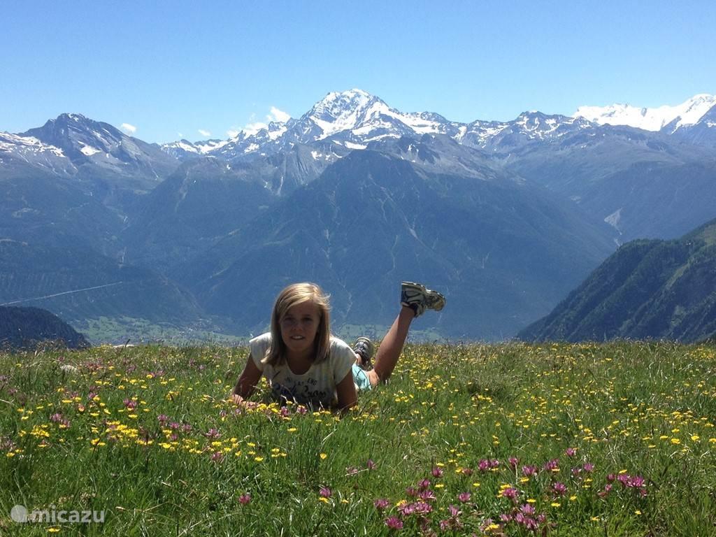 Lekker zonnen in de bergen. Even uitrusten op de wandeltocht van de hohbiel naar beneden.