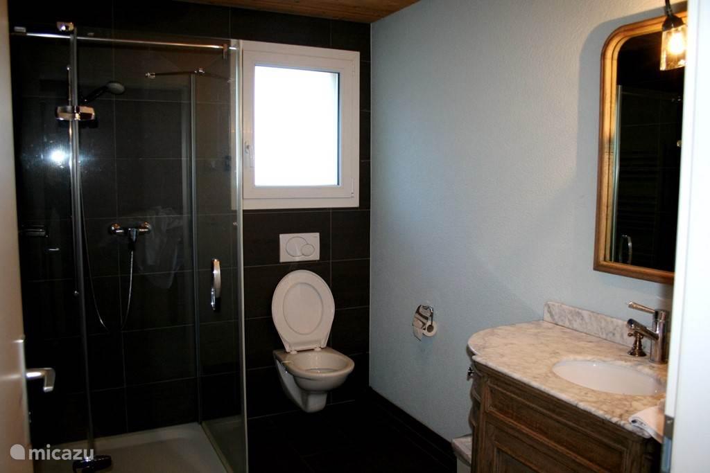 De badkamer en het toilet