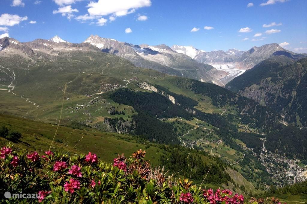 Overzichtsfoto van de Belalp genomen vanaf de Foggenhorn (2700m).