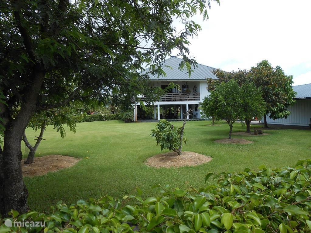 Buitenzijde Villa Palm Village  en deel van de tuin