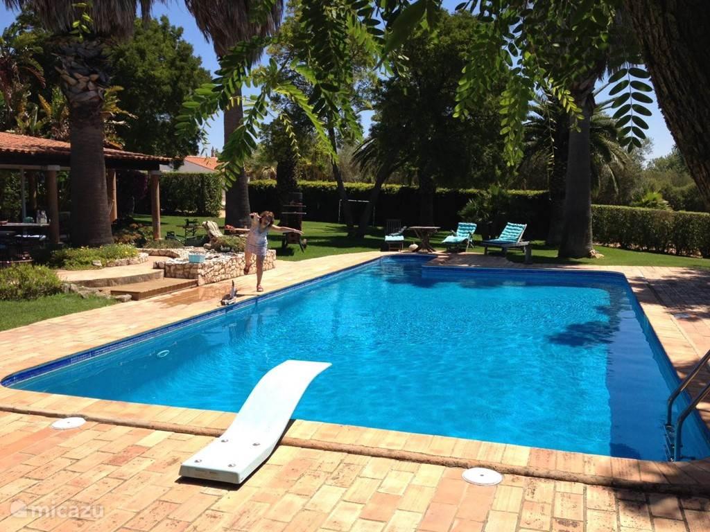 Oase van rust aan het zwembad
