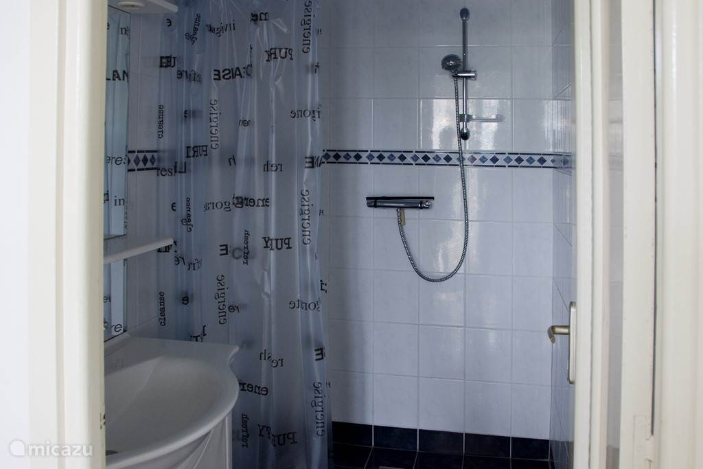 Spacious bathroom with shower basin