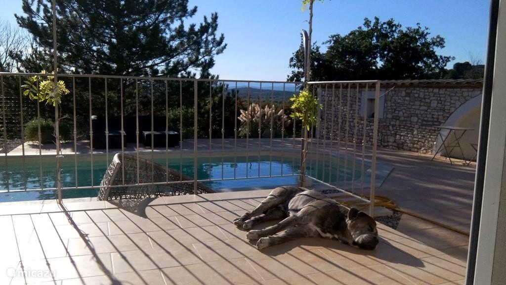 Vacation rental France, Languedoc-Roussillon, Cruviers-Lascours villa Les Hauts de Lascours