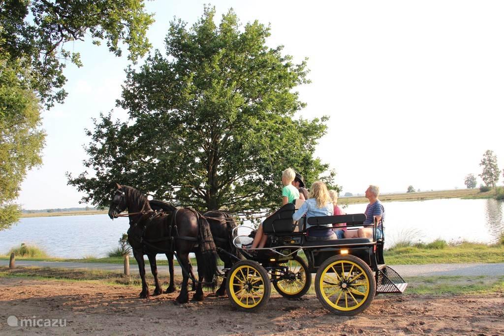 Een ritje door Nationaal park Dwingelderveld.