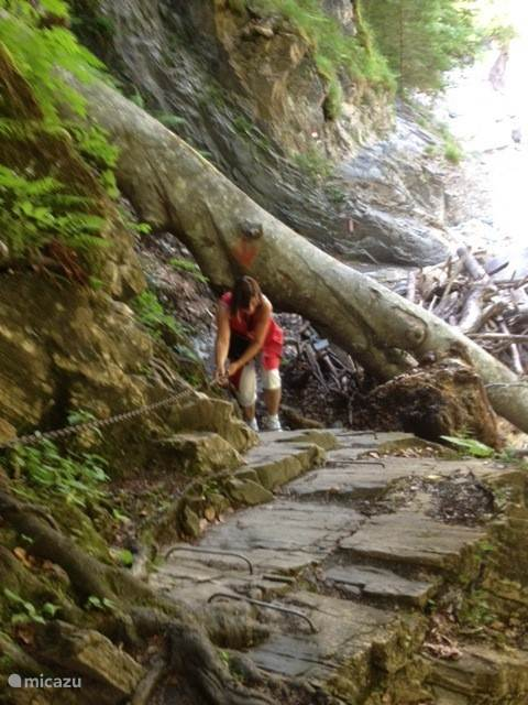 The spicy but nice walk on the Garnitzenklamm. There are hundreds of kilometers of marked hiking trails. These are for doing each.
