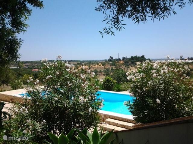 Vakantiehuis Portugal, Algarve, Moncarapacho Vakantiehuis Quinta do Vista
