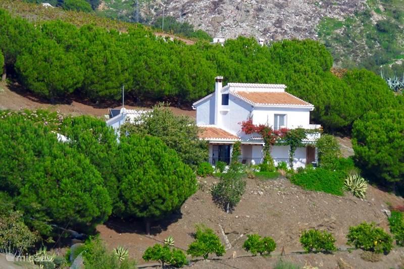 Vakantiehuis Spanje, Andalusië, Cómpeta Bed & Breakfast Finca Abundancia B&B Cómpeta