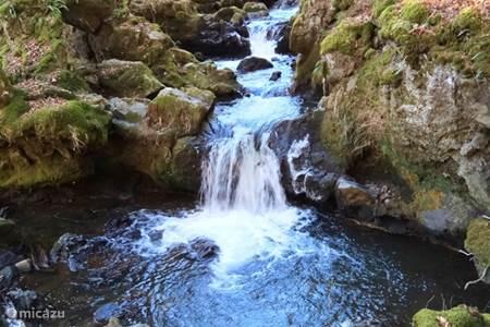 Diverse watervallen in de directe omgeving