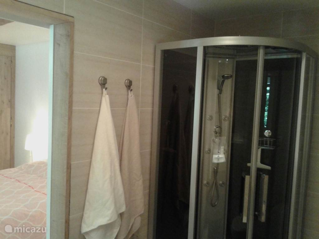 Bathroom - luxury shower