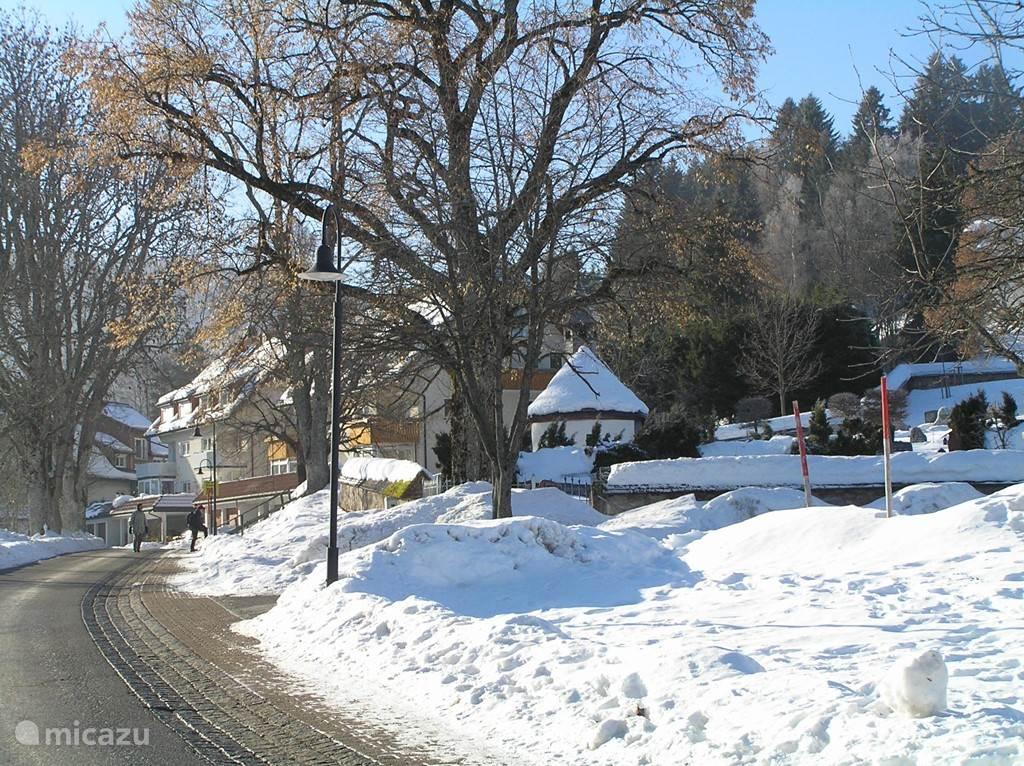 Het dorpje Altglashütten