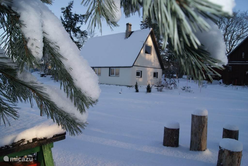 Vakantiehuis Sepa talu Wintertijd