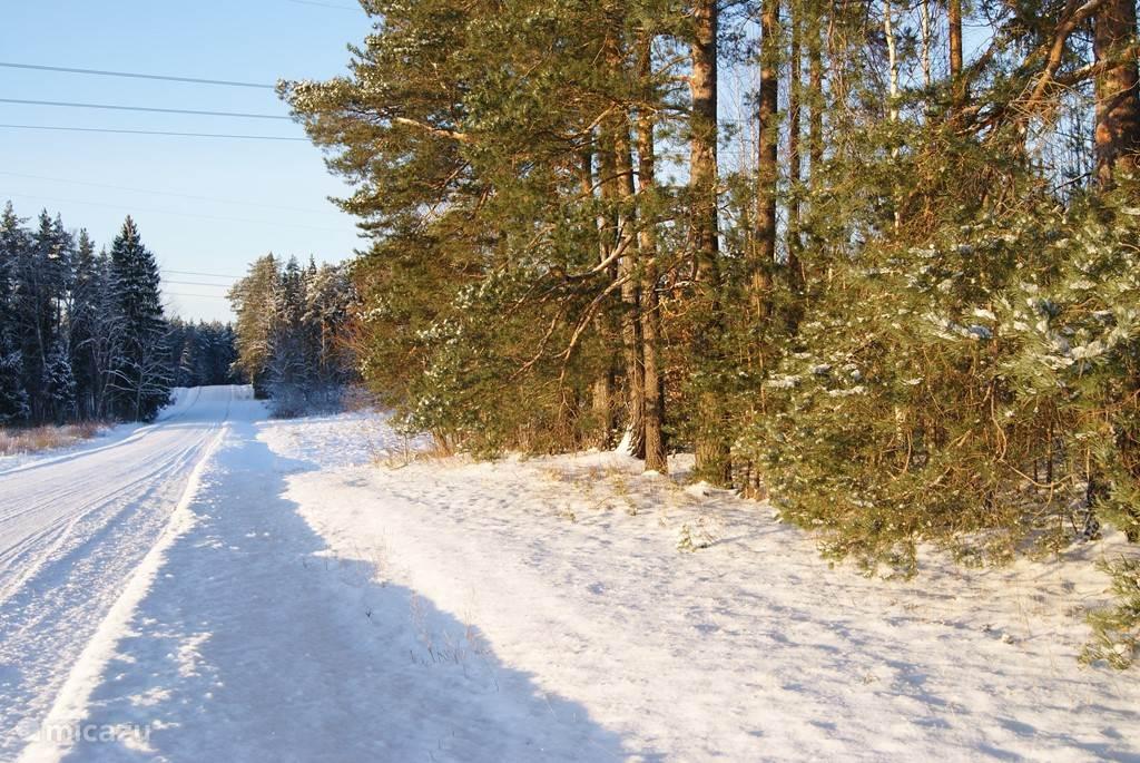 De Weg naar de oude wijnfabriek en landhuis Aakre (1,5 km) ligt in een prachtige rustige straat, omzoomd door eikenbomen