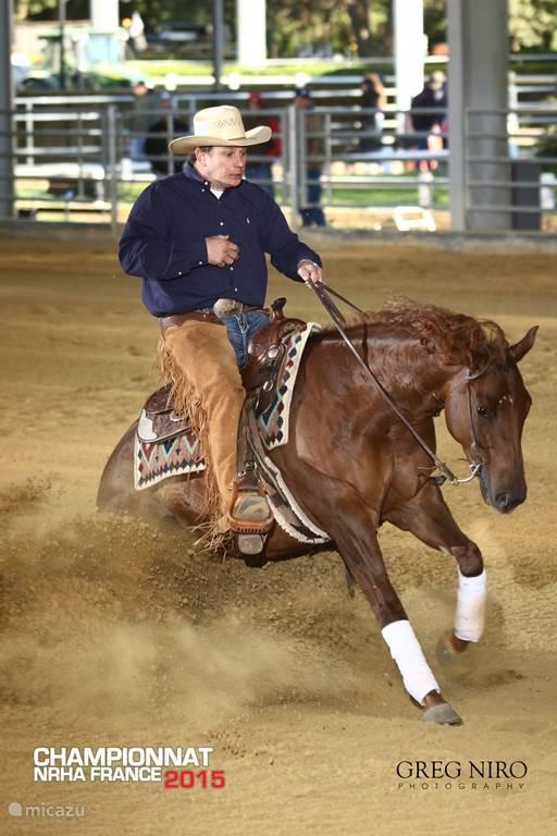 Reining paardrijden