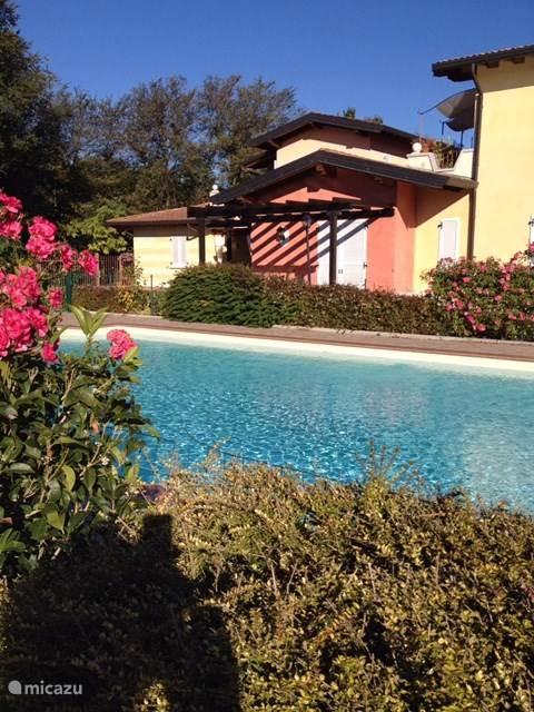 Gezamenlijk zwembad, ligt in een gezamenlijke tuin schuin voor het appartement.