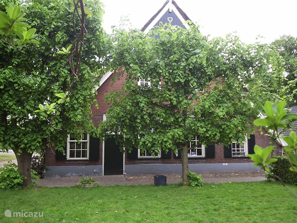 The living room with the linden trees for the home. In the summer they provide a very cool room