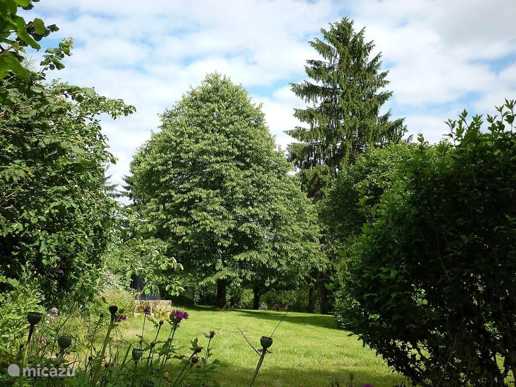tuin vanaf terras
