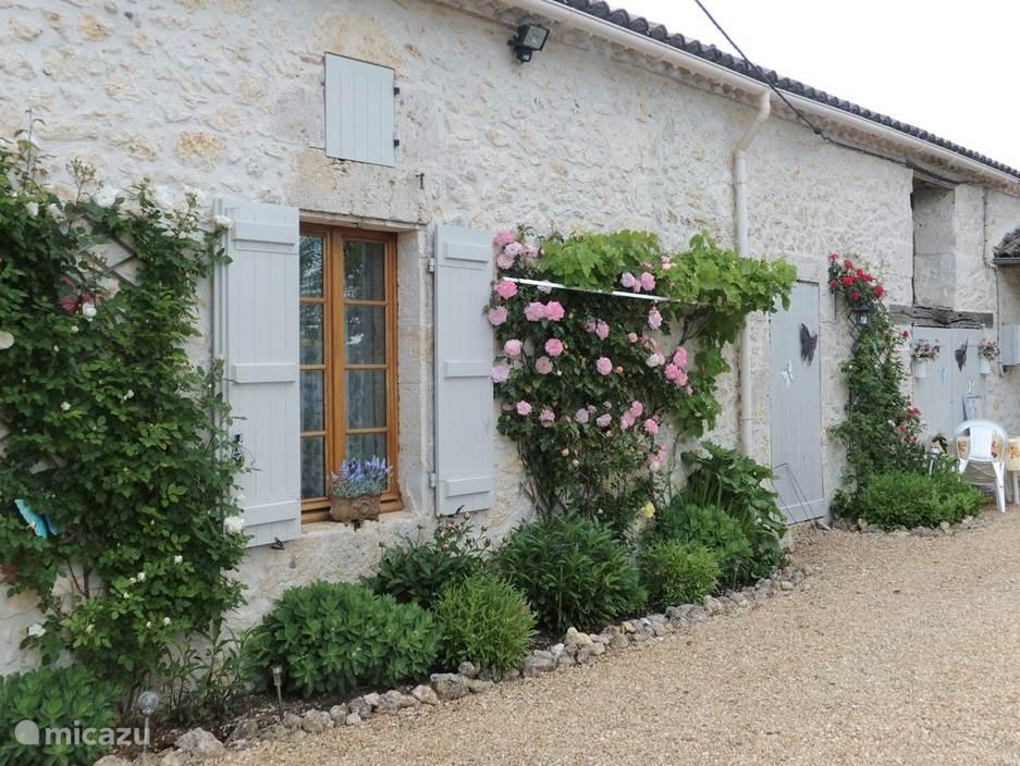 Voorkant huis met verschillende rozen soorten