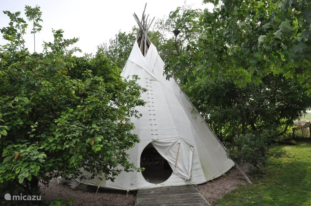Je kan lekker relaxen in de tipi die in de tuin staat, of een vuur maken in de tipi en genieten van een bbq met de ganse familie