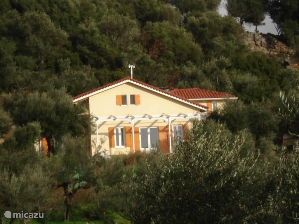 huis tussen de olijven