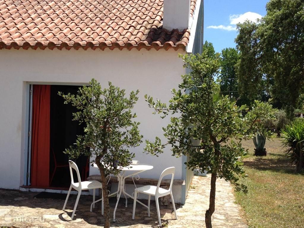 Vakantiehuis Portugal, Alentejo, Cercal do Alentejo - vakantiehuis Verdemar, Casa Azul , zwembad