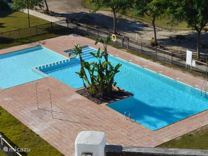 Het heerlijke zwembad met voldoende schaduw en vol op zon.