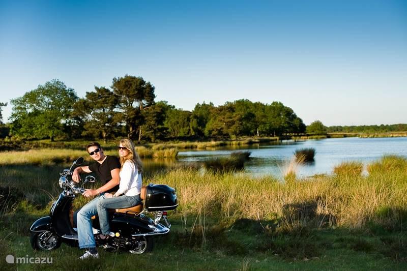 Vakantiehuis Nederland, Drenthe, Beilen Gîte / Cottage Cottage Dwingelderveld