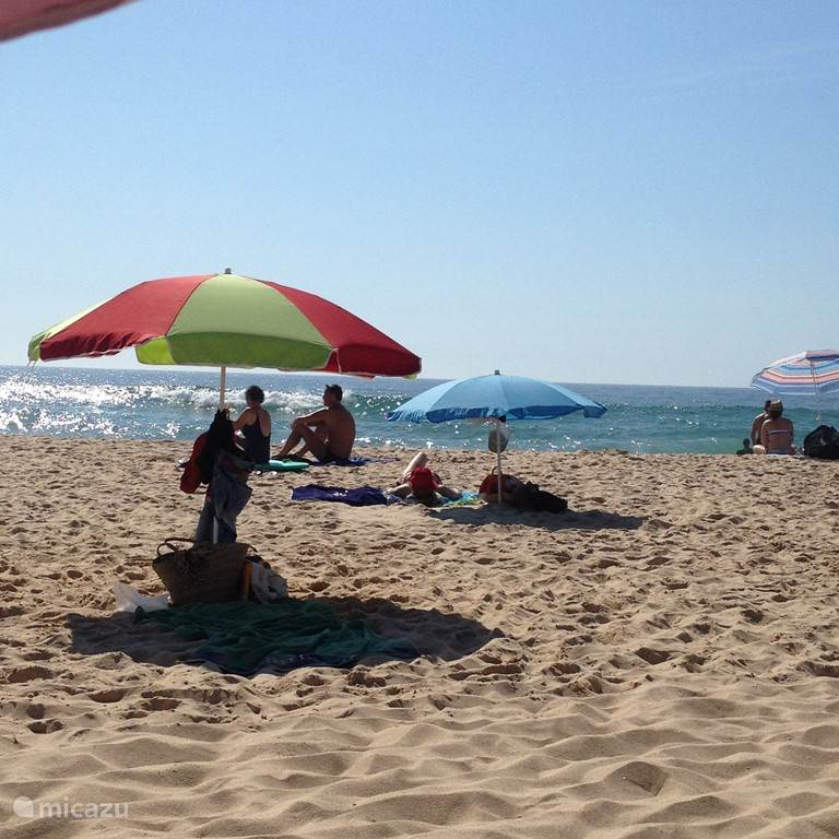 heel veel mooie ongerepte stranden