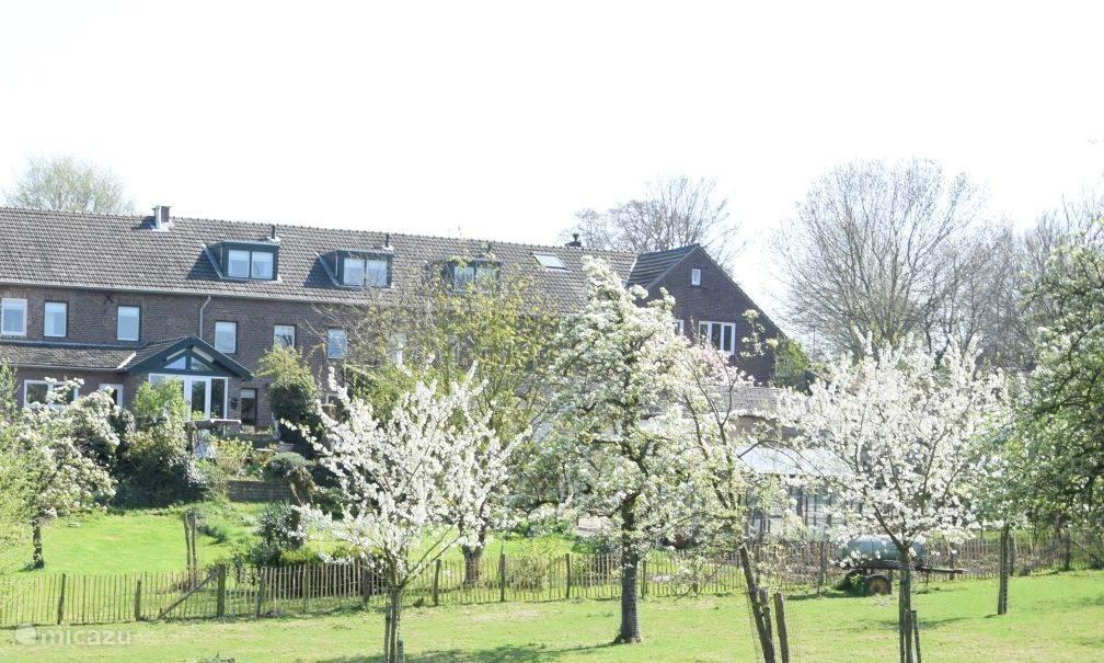 Vakantiehuis Nederland, Limburg, Mechelen Vakantiehuis Hoeve Schevey