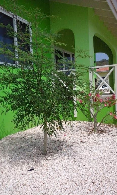 Buitenkant met tuin