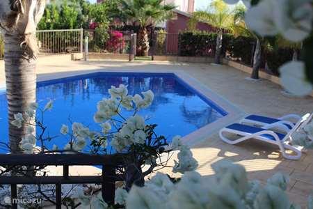 Vakantiehuis Spanje, Costa Cálida, Banos y Mendigo villa Los Olivos 9