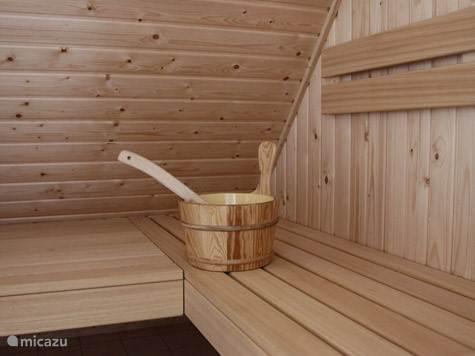 Traditionele opgietsauna in uw villa.